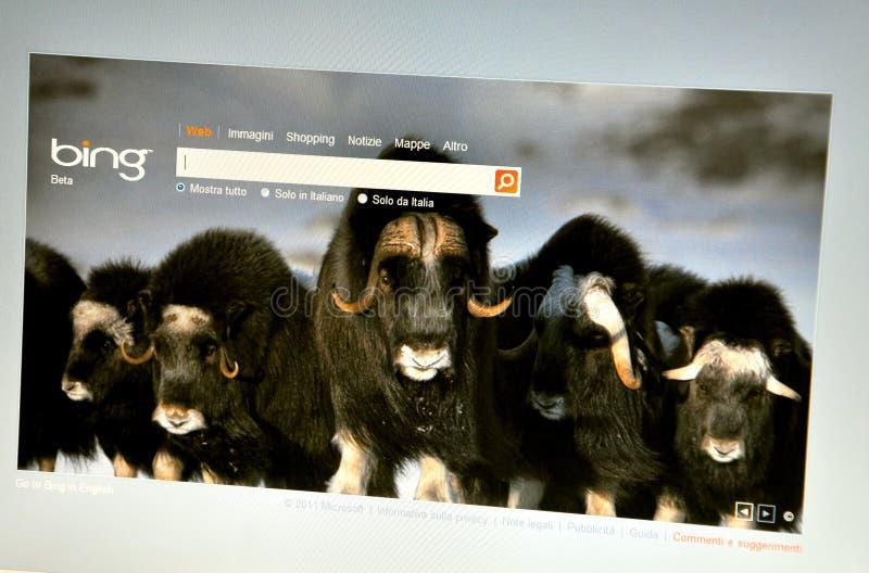 Web site de Bing Italy imagem de stock