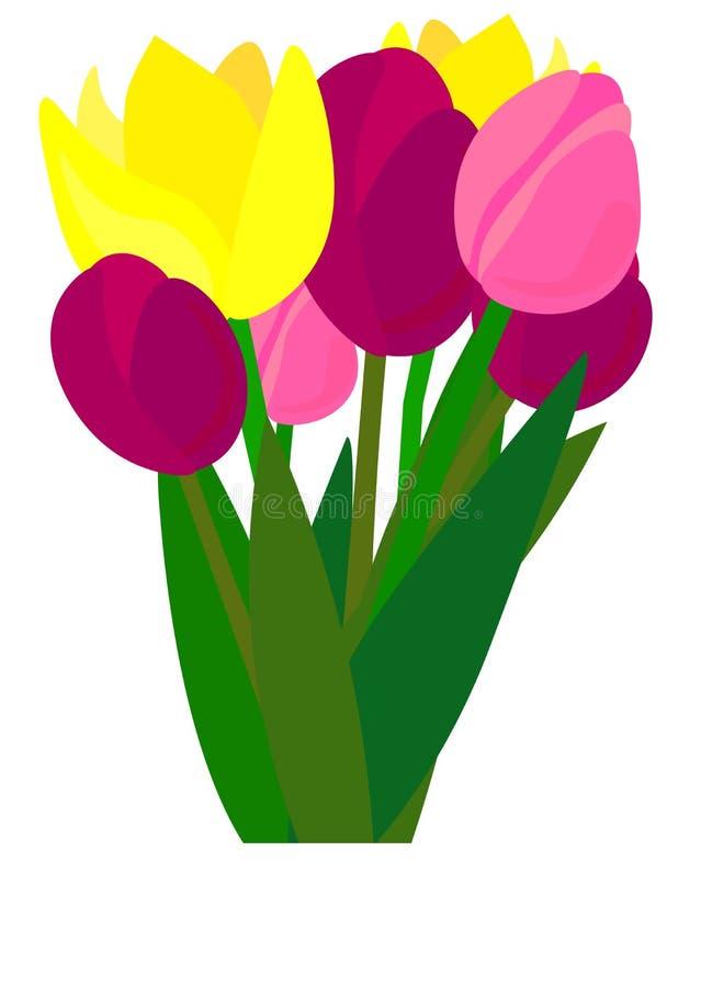 web Tulipano Illustrazione di vettore primavera Fiori realistici Mazzo royalty illustrazione gratis