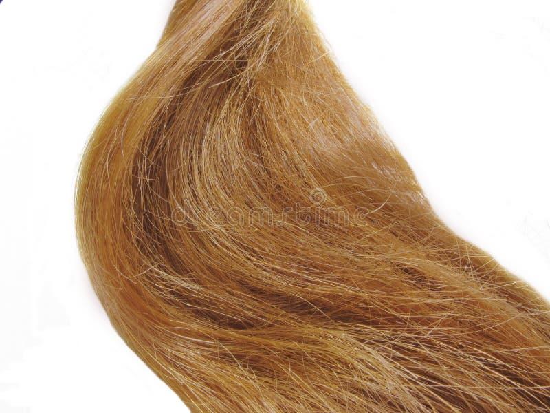 Webart des gingery Haares stockfoto