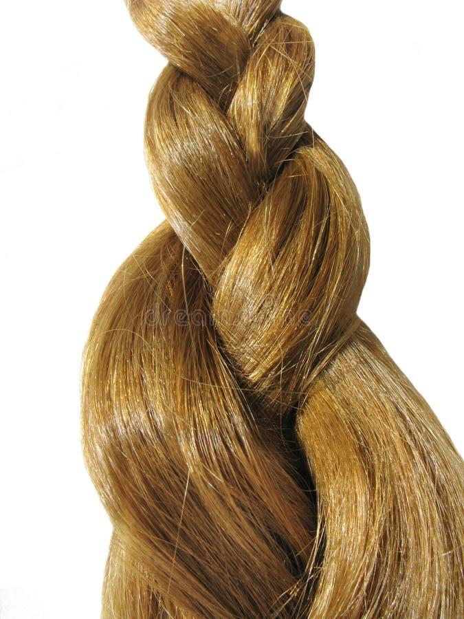 Webart des gingery Haares lizenzfreie stockbilder