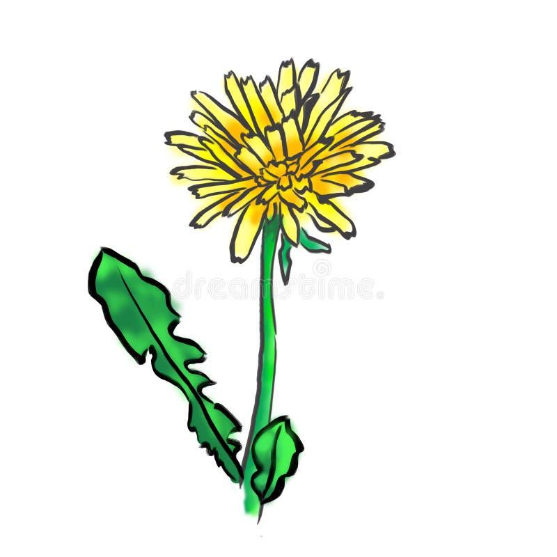 Webpictogrammen, bloemvector, paardebloem royalty-vrije illustratie