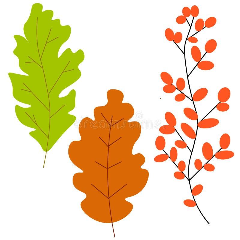 WebSet des feuilles et des baies d'automne colorées D'isolement sur le fond blanc Styl plat de bande dessinée simple illustration libre de droits