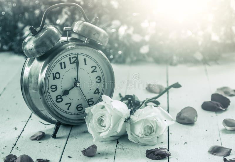 Wecker mit Weißrose auf hölzernem Hintergrund lizenzfreie stockfotografie