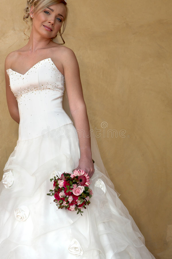 Wed Dress royalty free stock photos