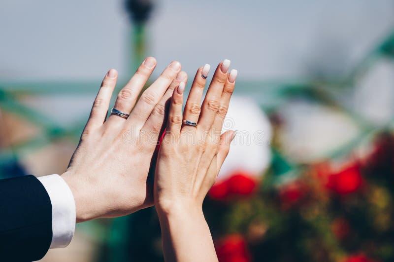 Wed recentemente as mãos do ` s dos pares com alianças de casamento fotografia de stock royalty free