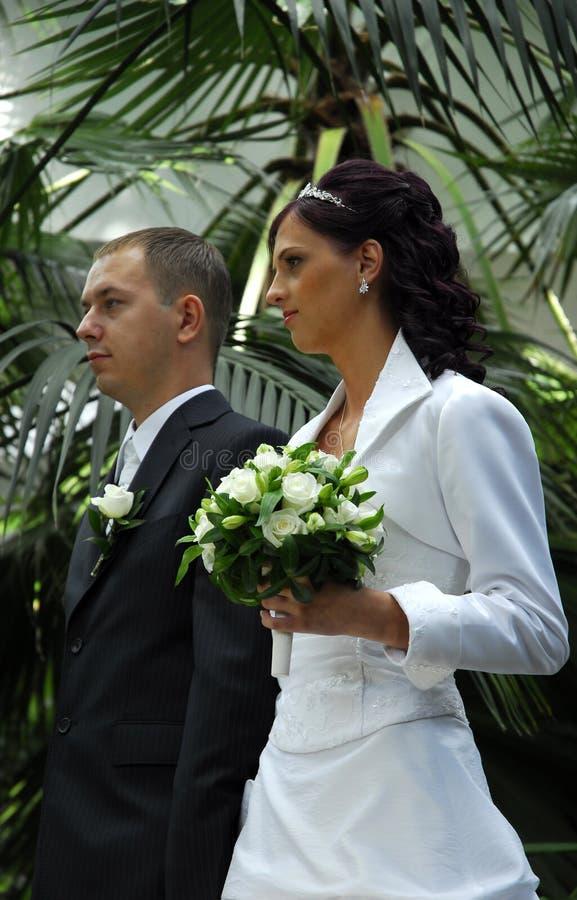 Download Wedded couple in garden stock photo. Image of groom, hand - 3450034