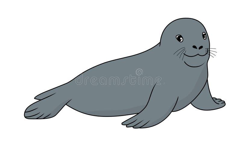 Weddell Seal vector illustration.Seal vector stock image royalty free illustration