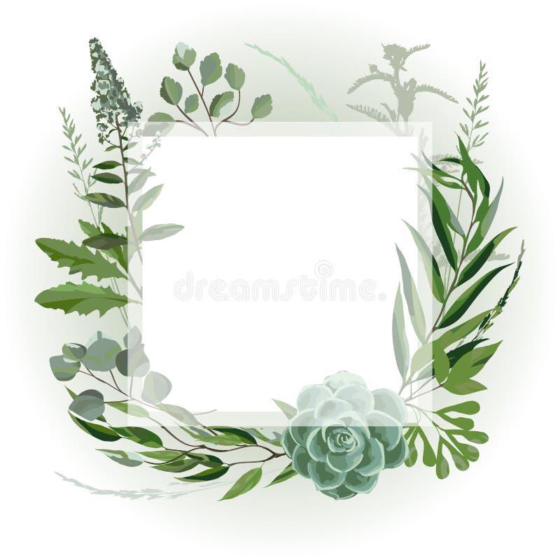 Wedding травяная рамка иллюстрация вектора