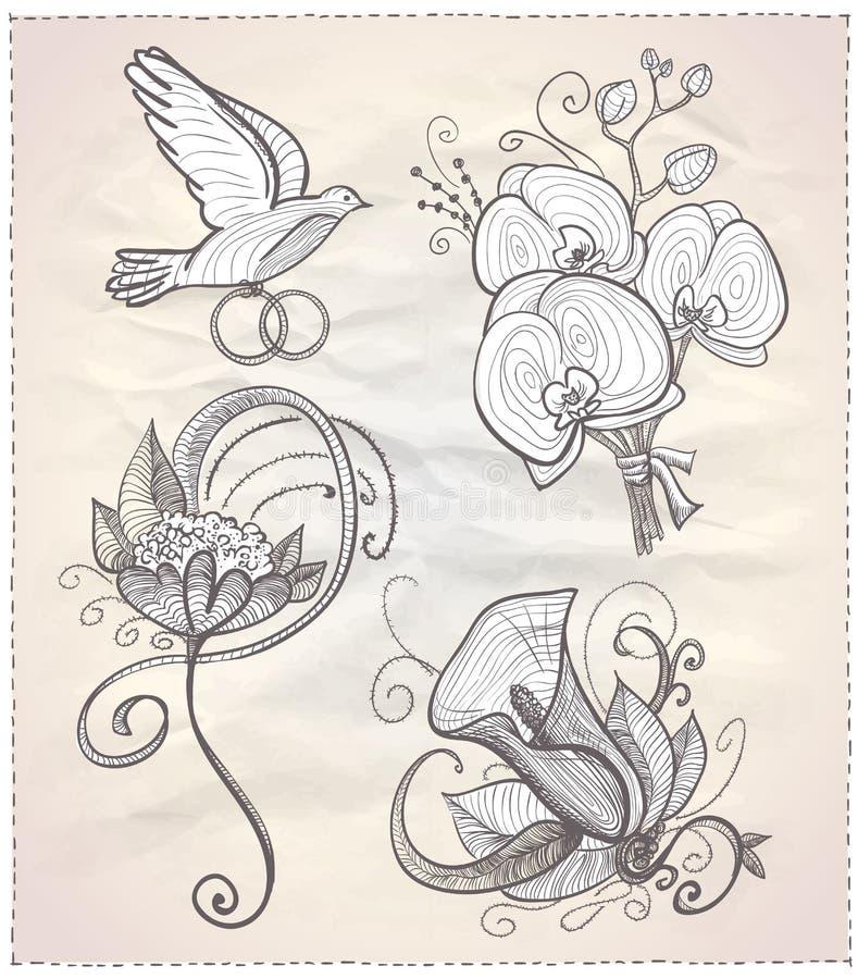 Wedding флористической график нарисованный рукой установил на бумагу. иллюстрация вектора