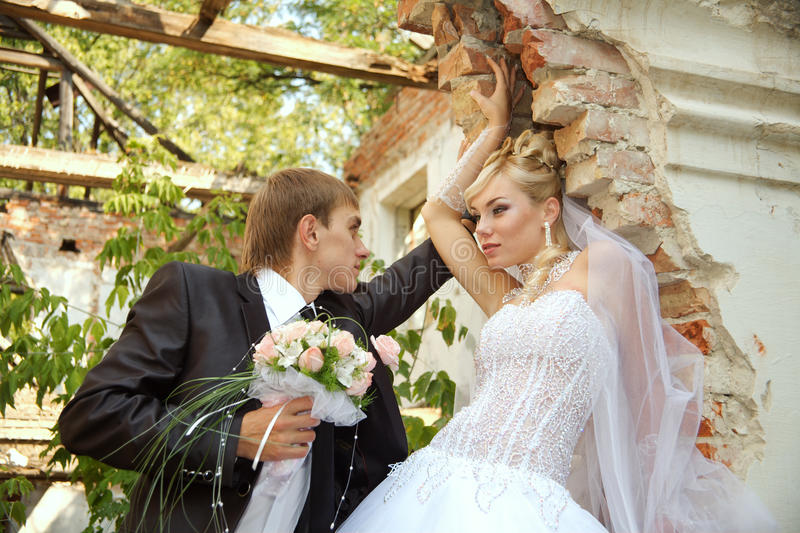 Download Wedding stock photo. Image of events, loving, male, enjoyment - 10912750