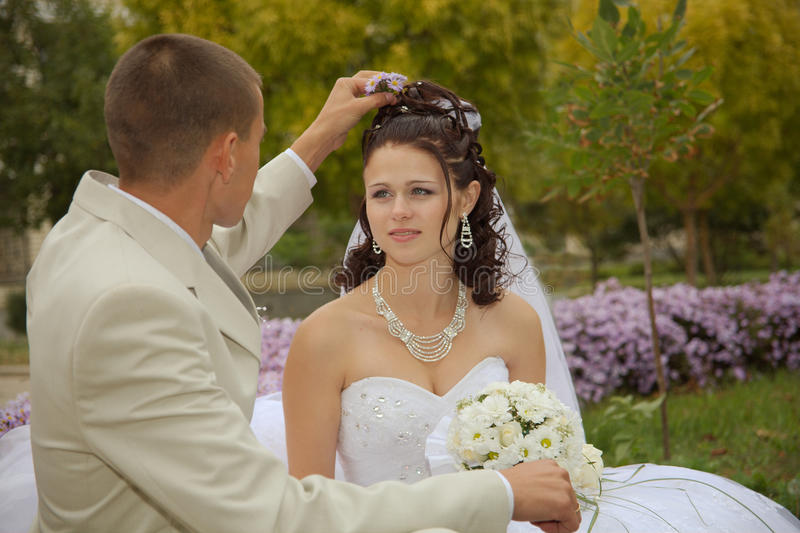 Download Wedding stock photo. Image of happiness, bouquet, husband - 11182386