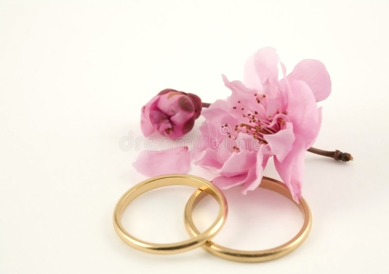 Wedding. Bands with sakura (Japanese plum or cherry) blossoms royalty free stock photo