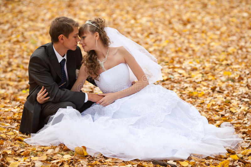 Wedding. Theme, the bride and groom are in the maple leaves on grass stock image