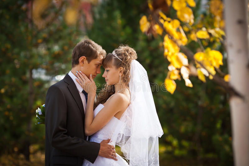 Wedding. Happy young couple just married - wedding day stock photos