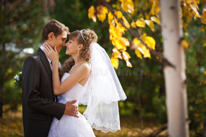 Wedding. Happy young couple just married - wedding day royalty free stock photo