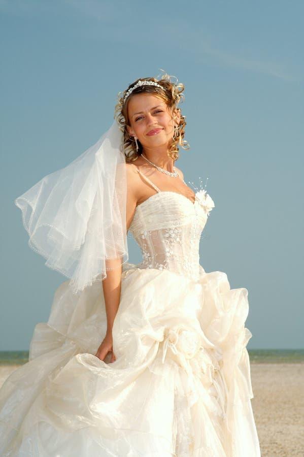 Wedding royalty free stock image