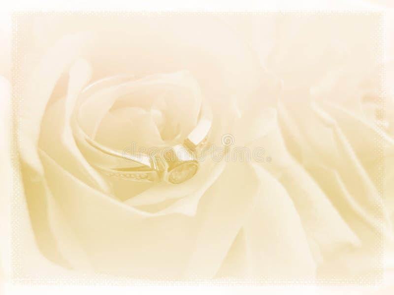 Download Wedding background stock photo. Image of framework, card - 14961962