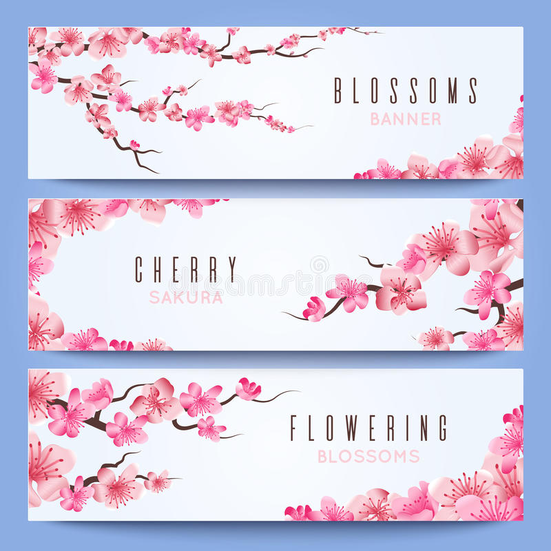 Wedding banners template with spring japan sakura cherry blossom download wedding banners template with spring japan sakura cherry blossom stock vector illustration of stopboris Image collections
