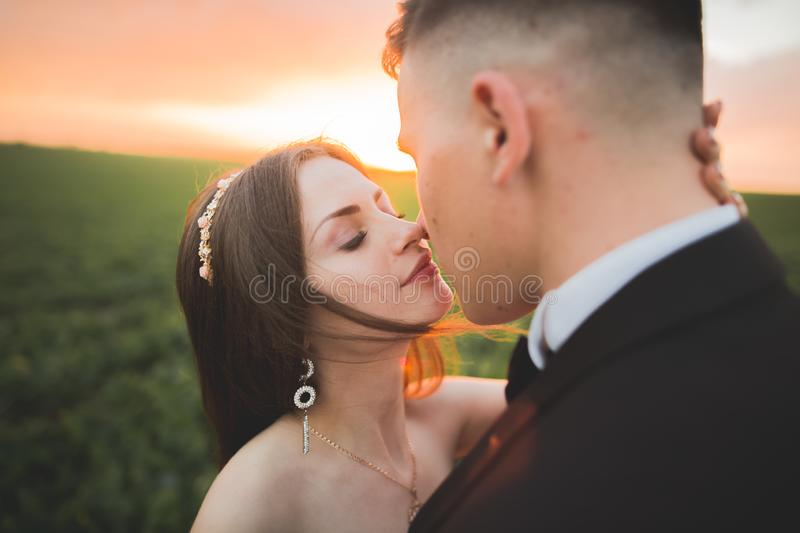 Wedding, Beautiful Romantic Bride and Groom Kissing Embracing at Sunset royalty free stock photography