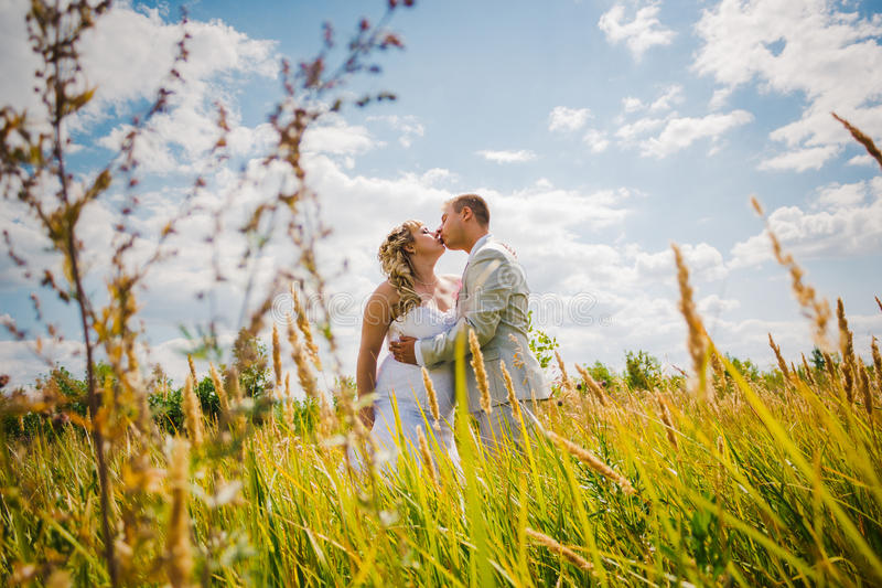 Wedding beautiful young couple kissing on the background of meadows stock photo