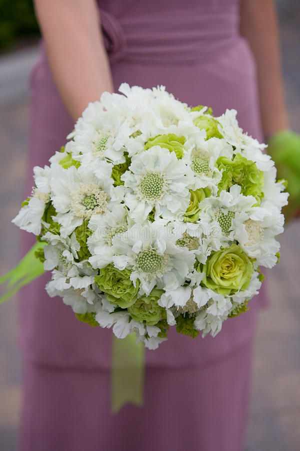Wedding Bouquet. Bridesmaid holding a wedding bouquet royalty free stock image