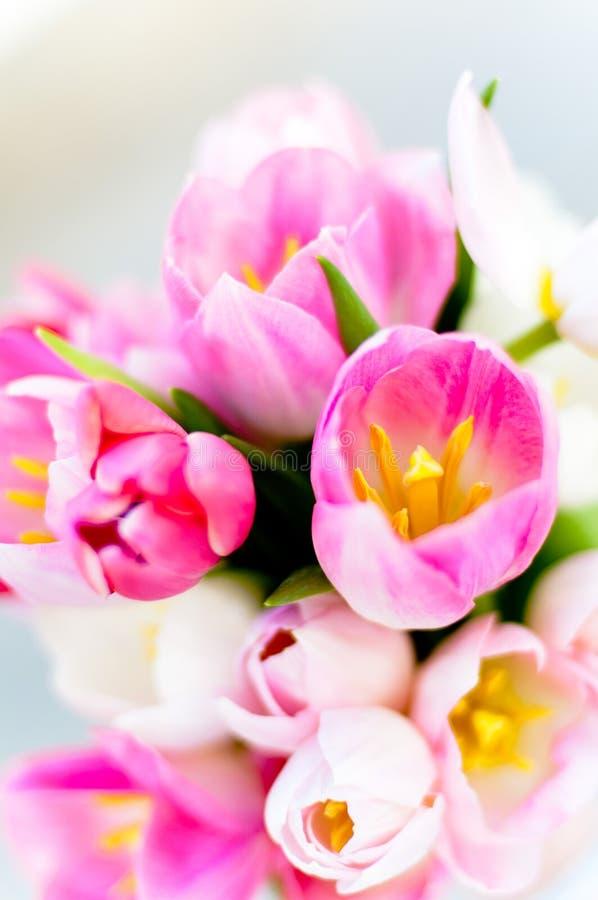 Download Wedding Bouquet Stock Image - Image: 25522501