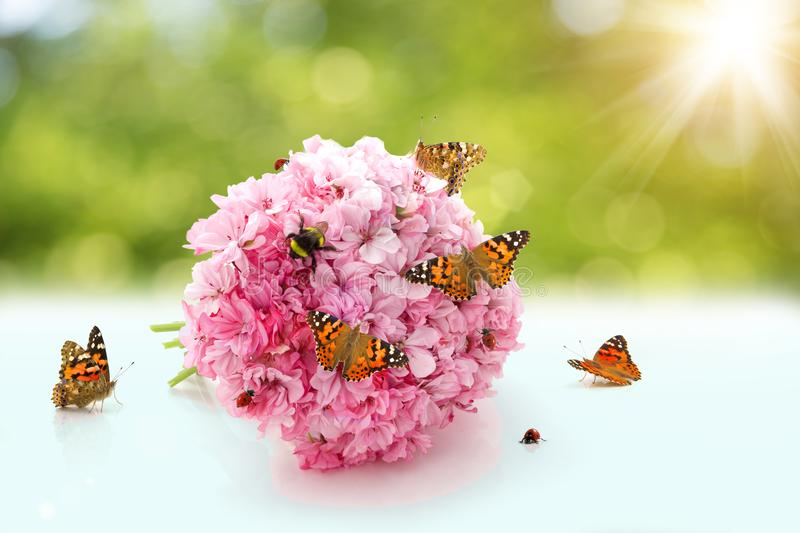 A wedding bouquet with insects. Butterfly, bee, bumblebee, ladybug crawling on the flowers in the sun. royalty free stock image