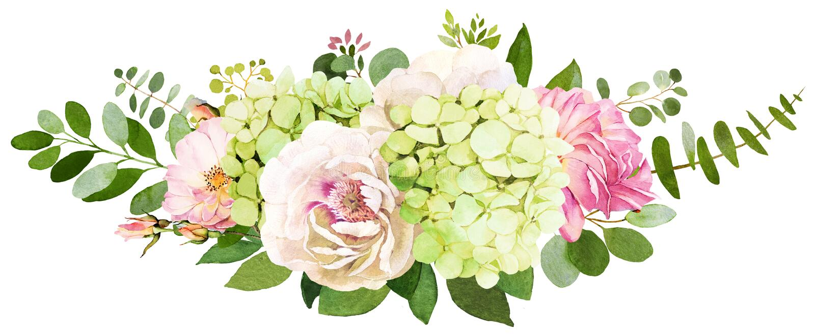 Wedding bouquet. Peony, Hydrangea and rose flowers watercolor il. Lustrations royalty free illustration