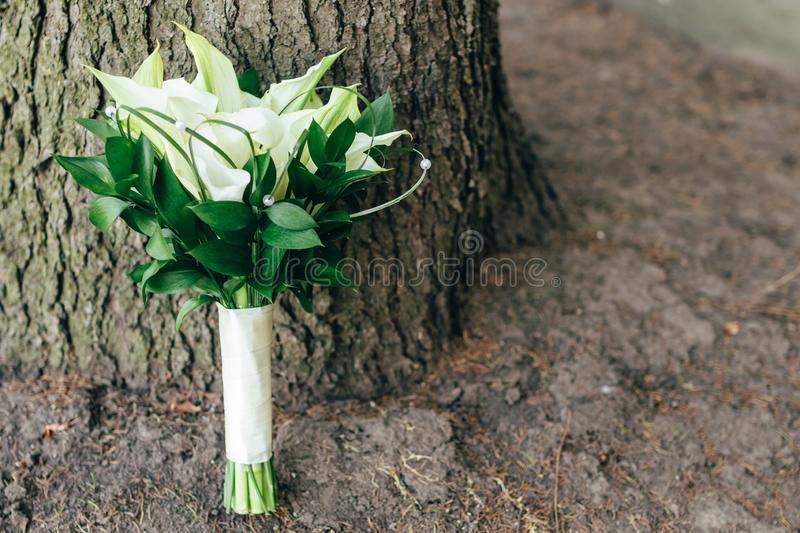 Wedding bouquet stands near the tree. copyspace, space for text stock image