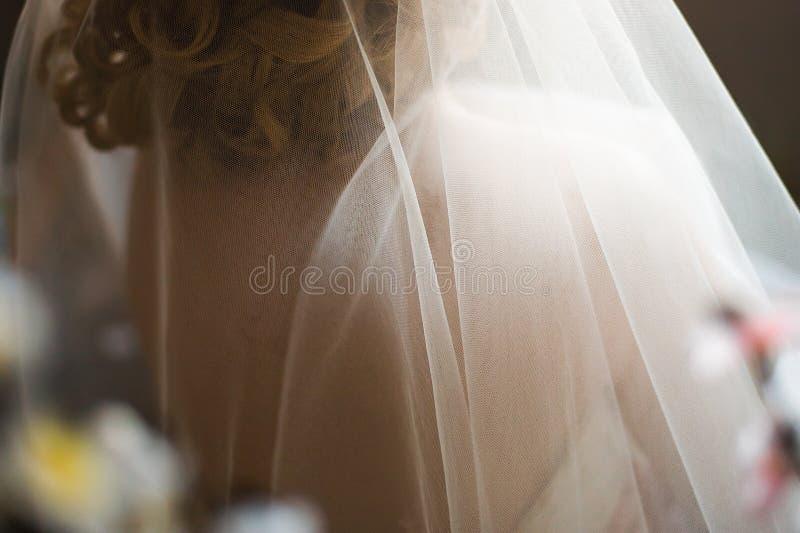 Wedding Brautschleier lizenzfreies stockbild