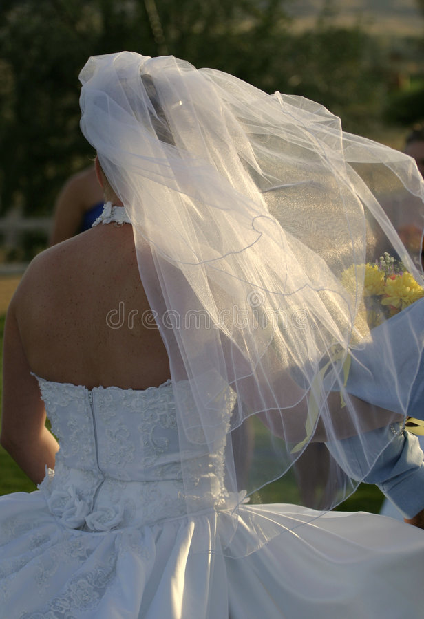 Wedding Bridal Veil 2. Here comes the bride. Her bridal veil flows in the breeze and sun. Taken from the back stock image