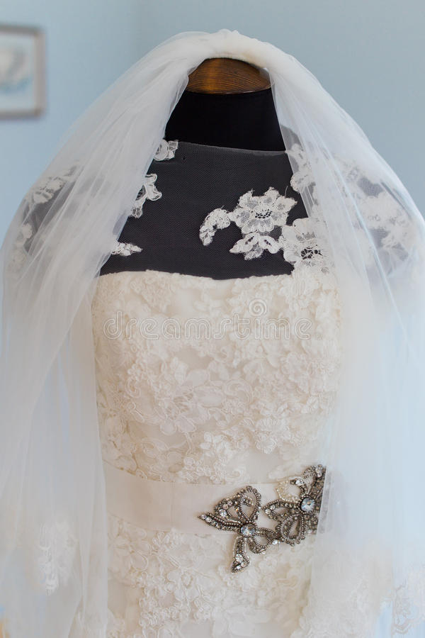 Download Wedding Bridal Veil Stock Images - Image: 32078174