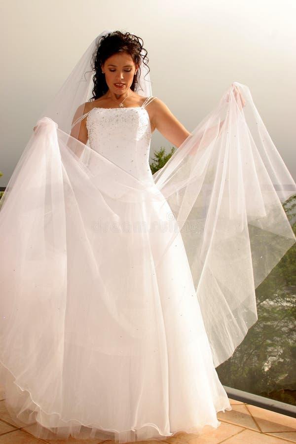 Wedding Bride stock photo