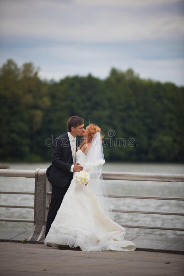 Wedding, bride and groom, love royalty free stock images