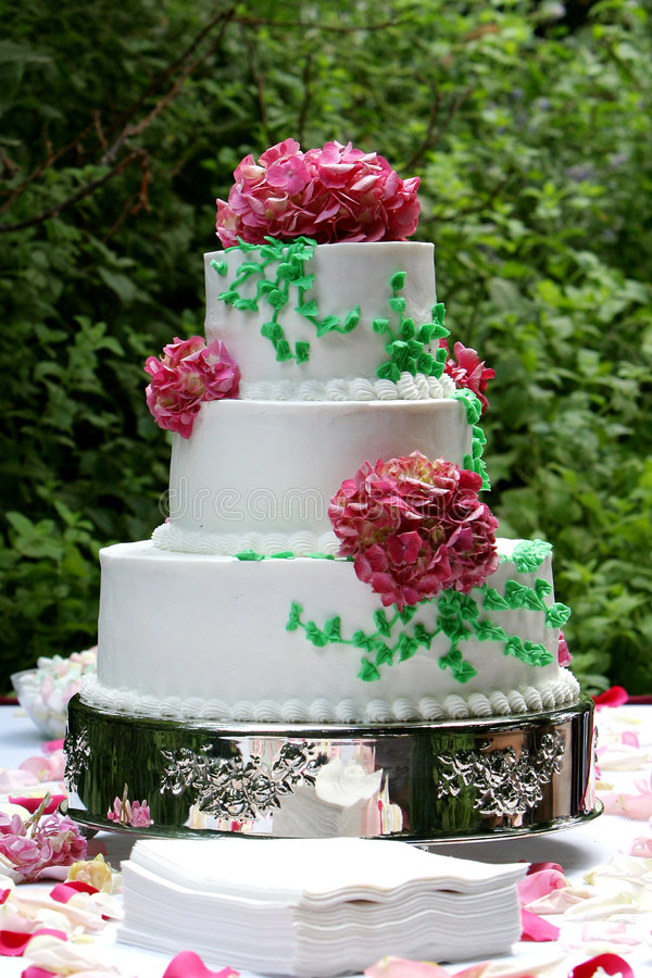 Download Wedding cake stock photo. Image of party, slice, cake, receptions - 455080