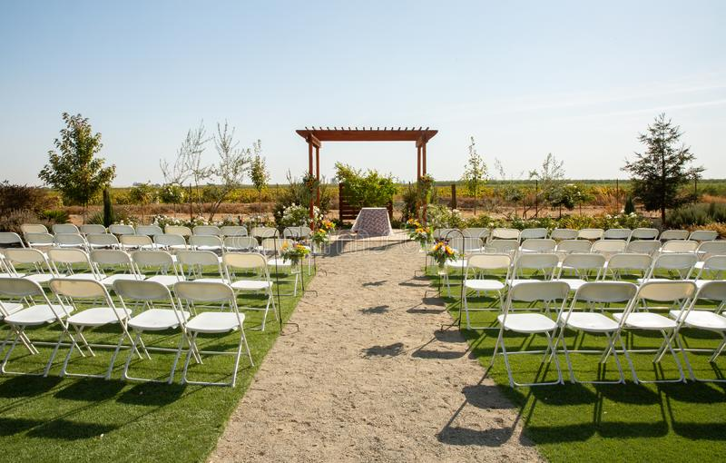 Wedding Ceremony by a Vineyard royalty free stock photography