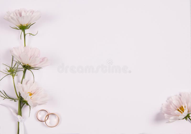 Wedding concept with white flowers royalty free stock images