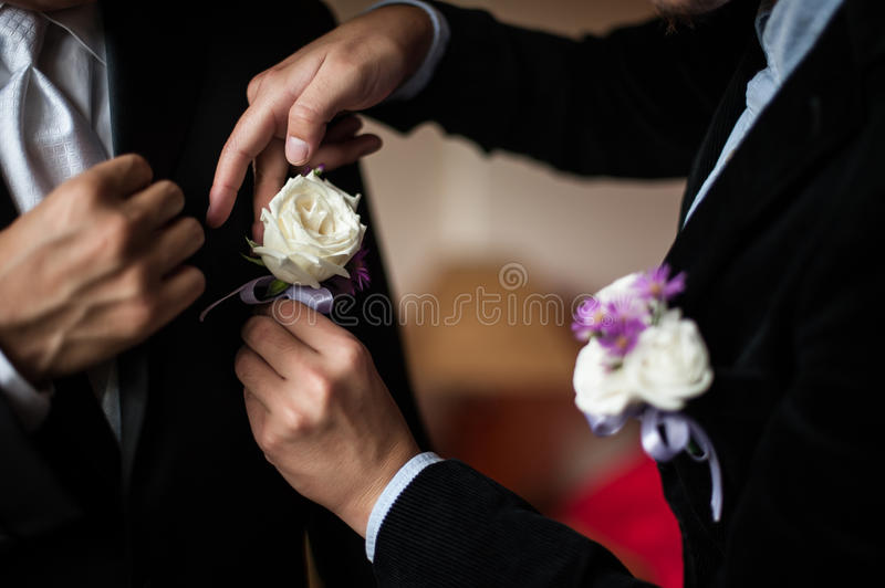 Wedding Corsage. Wedding groomsmen are wearing boutonniere for the groom stock image