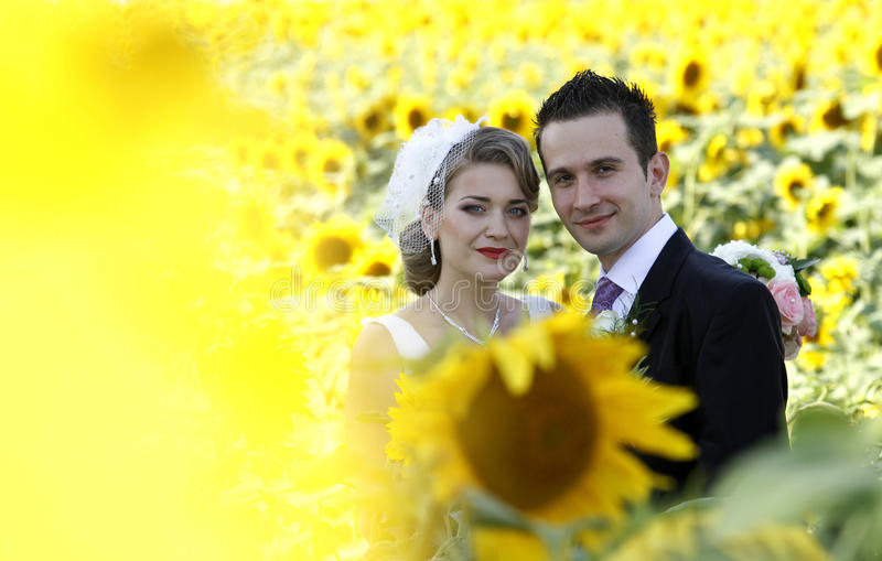 Download Wedding couple stock photo. Image of adult, female, groom - 15324610