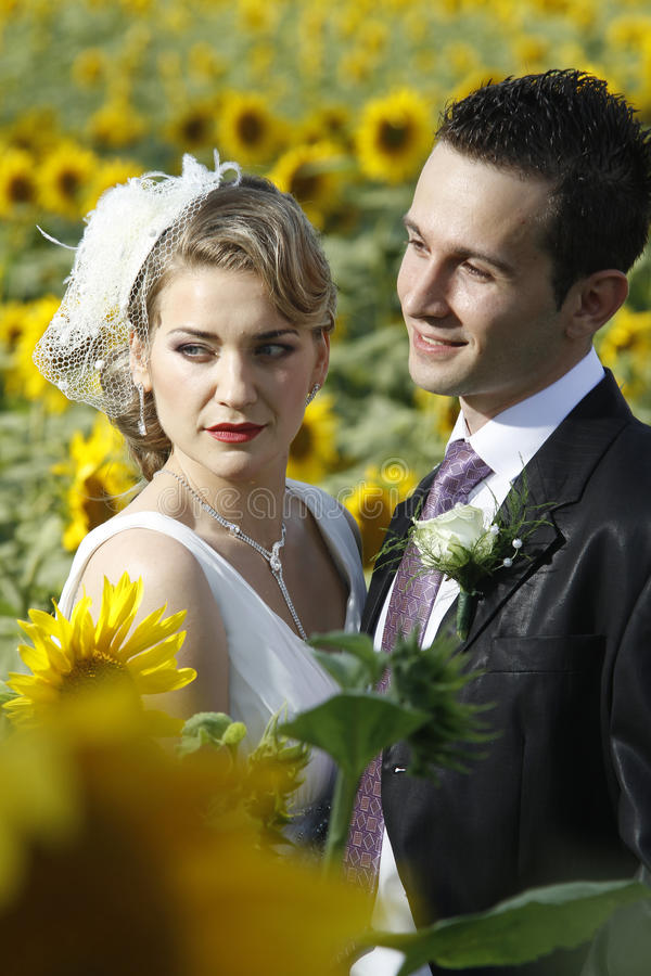 Wedding couple. Young attractive wedding couple posing in a sunflower field stock images