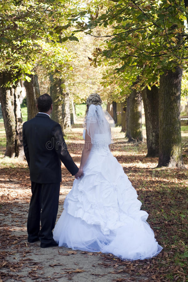 Wedding couple. Just married wedding couple standing in a tree alley in a park; both bride and groom are turned away stock image