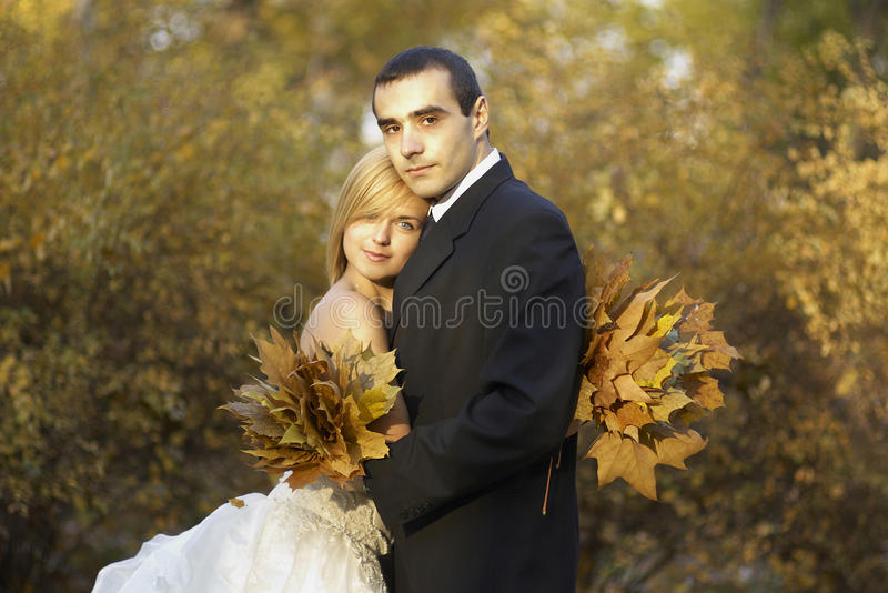 Wedding couple at the autumn park.Beautiful married couple in the wedding day stock photo