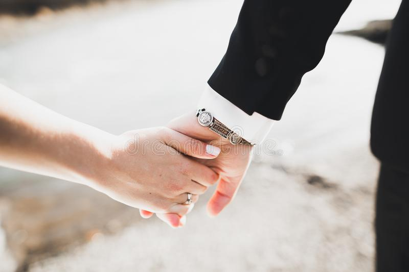 Wedding couple bride and groom holding hands.  royalty free stock photography