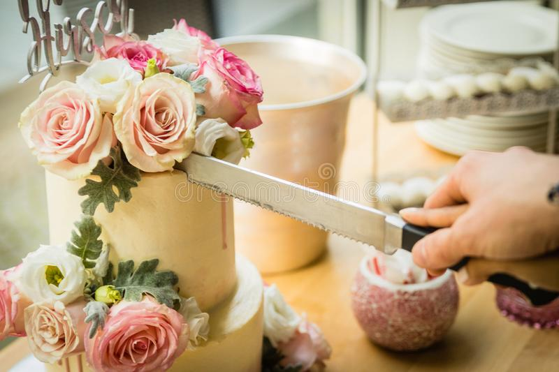 Wedding couple cutting the wedding cake on their wedding day stock images