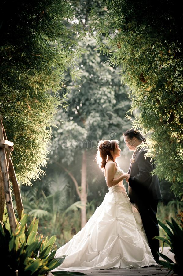 Wedding couple enjoying romantic moments outsides on a summer. Happy bride and groom on their wedding. stock photo