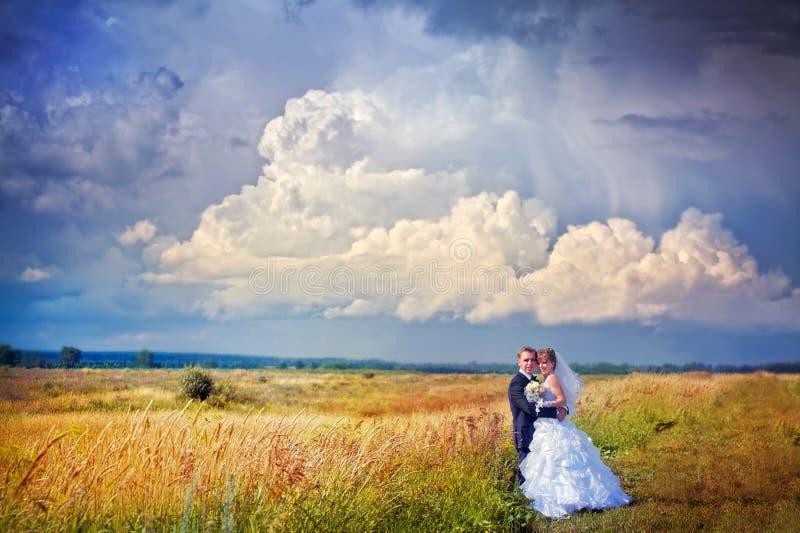 Wedding couple. In a field stock photos