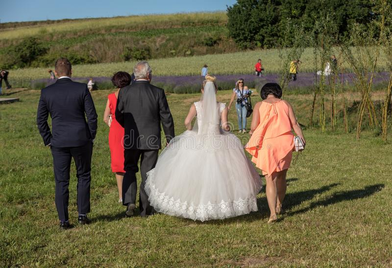 The wedding couple goes for a photo session in the field of lavender Ostrow near Cracow, Poland royalty free stock images