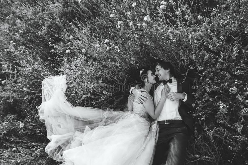 Couple happy laughing and lying in the grass and flowers. Wedding couple happy laughing and lying in the grass and flowers stock photos