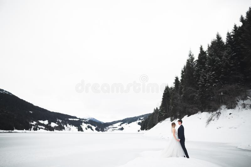 Wedding couple holding hands, groom and bride together on wedding day royalty free stock images