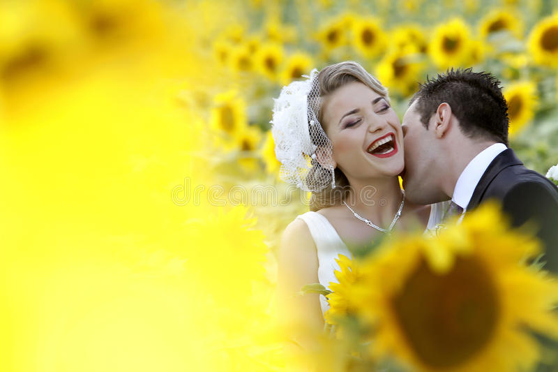 Wedding couple kissing royalty free stock photos